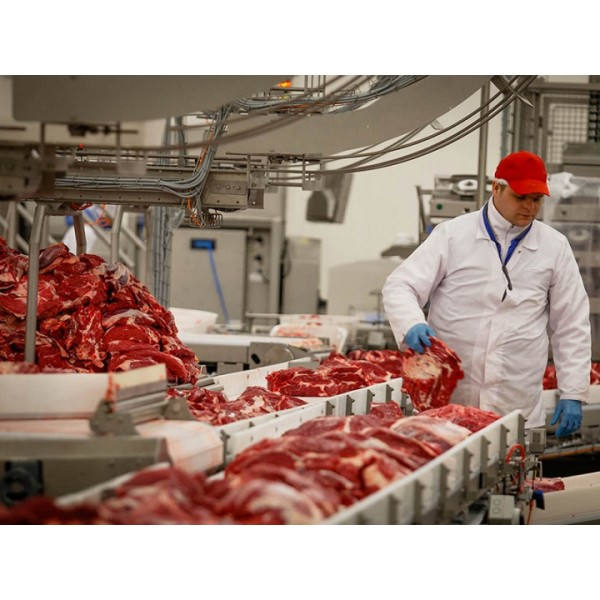 Meat processing company, investment amount $ 0.5 million